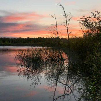 Morgens am Tävsmoorsee 1-1
